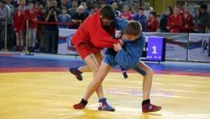 В Брянске самбисты научат учителей физкультуры самообороне