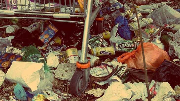 В Брянской области обнаружили 39 опасных свалок