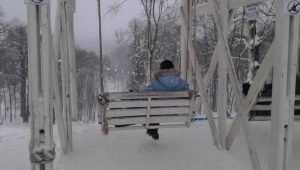 В Брянскую область пришли 19-градусные морозы