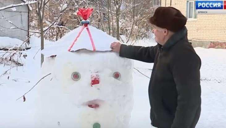 В Брянске 84-летний пенсионер создал сказку во дворе многоэтажки