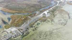 Сиваш стал гибнуть из-за перекрытия Украиной Северо-Крымского канала