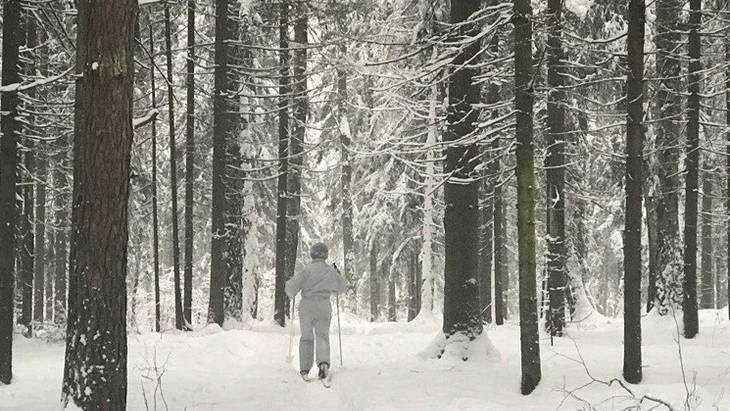 В Брянскую область 25 января придёт 25-градусный мороз