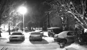 В Брянске загадочный мститель проколол колёса и закрасил номера машины