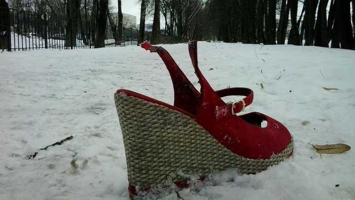 В Брянской области потеплеет до 5 градусов и пойдет снег