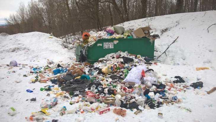 Брянский музыкант Лис призвал убрать мусор на Чашином Кургане