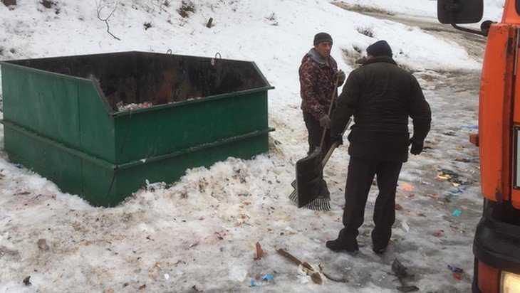 В Брянске Чашин курган очистили от мусора местных нерях