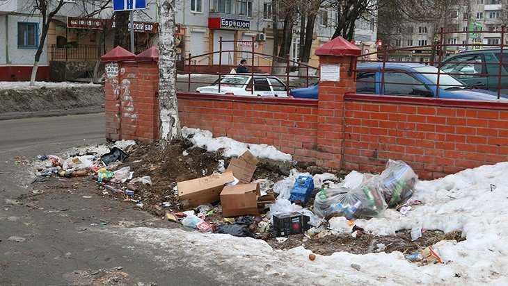 «Даниловский бар» наказали за свалку в Брянске на улице Костычева