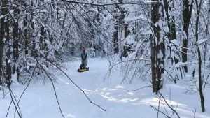 В первый день весны Брянскую область заметёт снегом