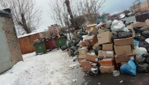 Жителей Клинцов возмутила стихийная свалка возле городской больницы
