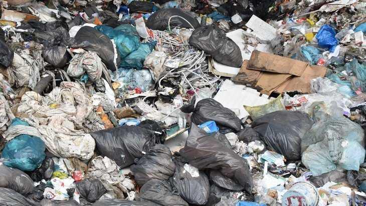 Государство поддержит региональных операторов по вывозу мусора