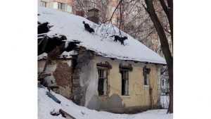 Брянцев позабавили собаки на крыше дома