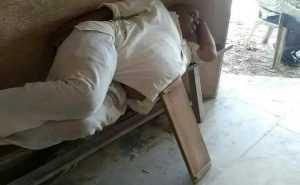 Брянские суды и спящие чиновники стали успешно опустошать казну