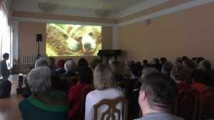 В Брянске фильм Шпиленков о медведях вызвал огромный интерес