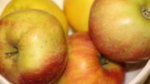 В Брянской области трактором раздавили 9 тонн сомнительных яблок