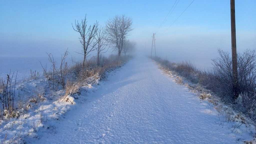 В Брянске объявили экстренное предупреждение из-за шквального ветра
