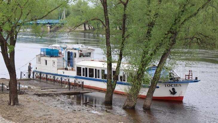В Брянске начали готовить проект расчистки Десны