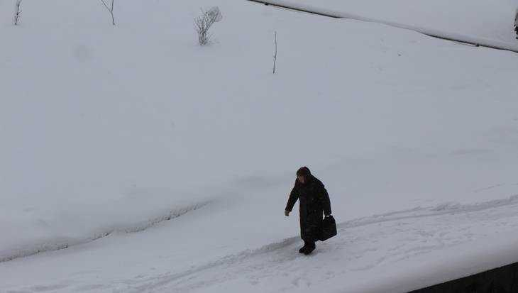 На Брянскую область обрушился снегопад