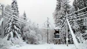 В Брянской области из-за снегопада без света остались 7 районов