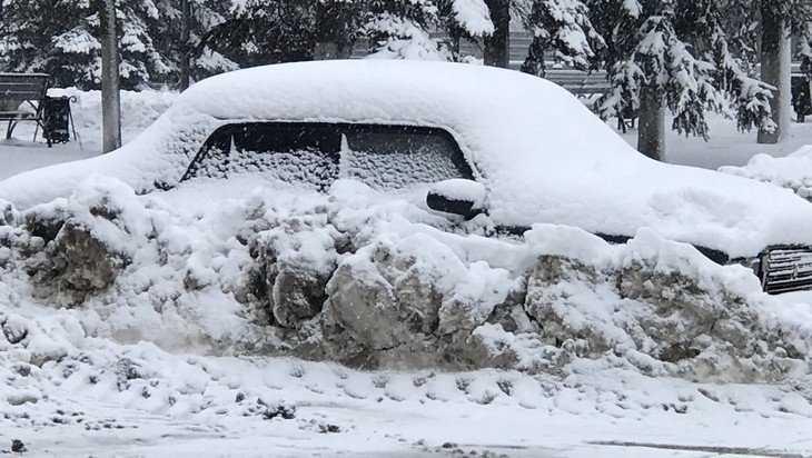 На Брянскую область выпало рекордное количество снега