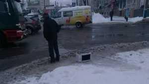 По Брянску прогулялся мужчина с микроволновкой на поводке