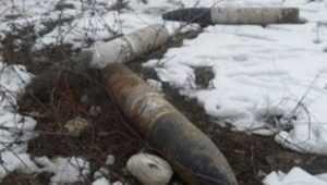 В Навлинском лесничестве обнаружили четыре снаряда и гранату