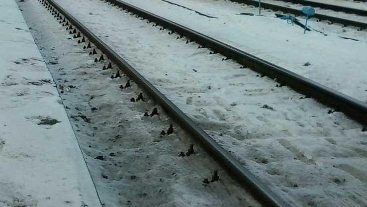 В Жуковке погибла сбитая грузовым поездом 60-летняя женщина
