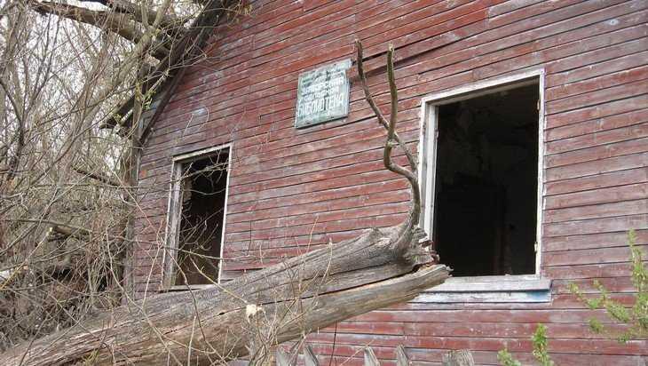 В Брянской области исчезла чернобыльская мафия
