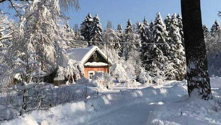 Морозы скуют Брянскую область