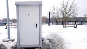 Установка туалета на набережной Брянска стала событием в городе