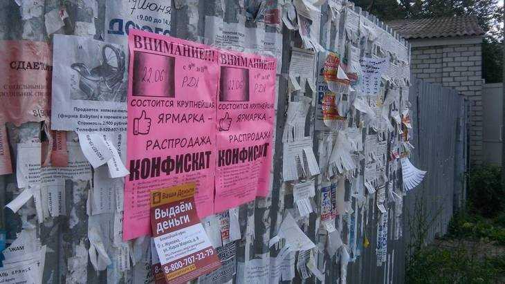 Избитый в Жуковке блогер Чесалин назвал версии нападения на него