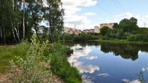Деснаград: экологический микрорайон Брянска