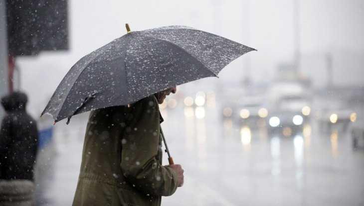 Брянцам 26 марта пообещали дождь со снегом и 8-градусное тепло