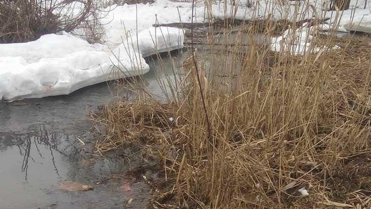 В Клинцах канализацией отравили реку Московку