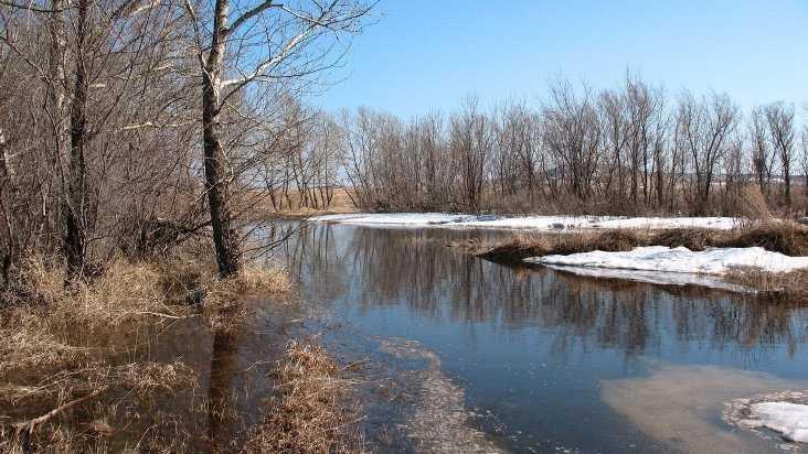 В Брянской области ночной мороз сменится 8-градусным теплом