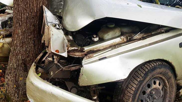 На брянской трассе ВАЗ врезался в дерево – водитель получил переломы