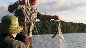 Жители Белых Берегов открыли весеннюю охоту на браконьеров