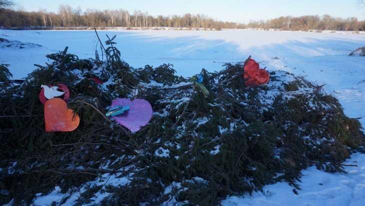 Власти Брянска пообещали убрать новогоднюю елку с берега Мутного озера