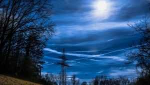 Предстоящая неделя в Брянской области будет сухой и теплой