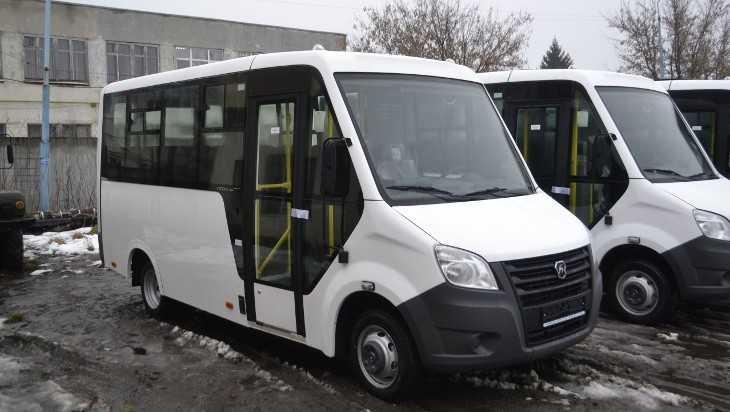 В Брянске по маршруту № 203 возобновили движение автобусы