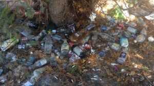 Брянцев возмутила свалка бутылок в сквере 50-летия комсомола