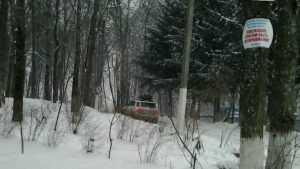 Жители Брянска вновь пожаловались на автомобили в парке «Соловьи»