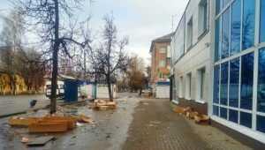В Брянске продавцов тюльпанов обвинили 8 марта в свинстве