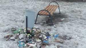 Одни мусорят, другие ноют: брянцы разделились на два лагеря
