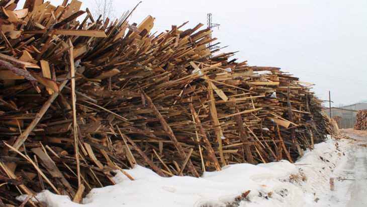 Гигантскую свалку древесных отходов нашли в Брянске