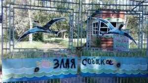 Для летнего отдыха каждого брянского ребенка власти заложили 646 рублей