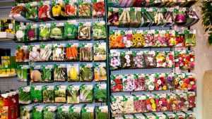 В брянском гипермаркете нашли опасные товары