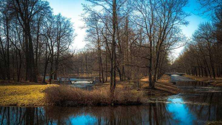 В Брянской области 20 марта потеплеет до 9 градусов