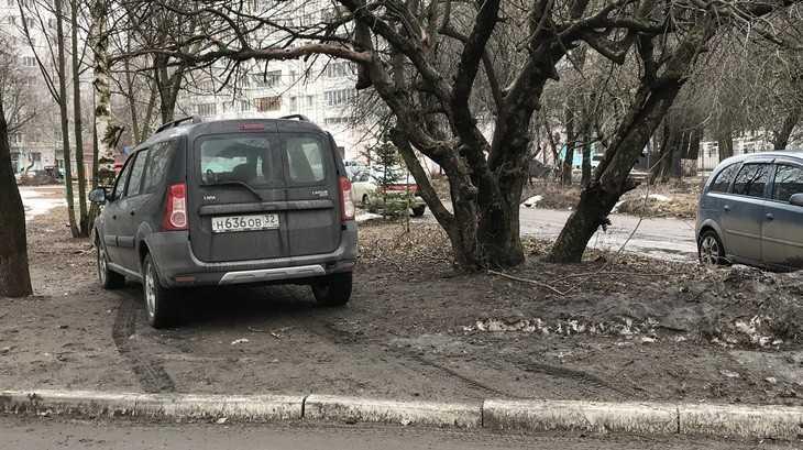 В Брянске перед носом у полиции водитель смело остановился на газоне