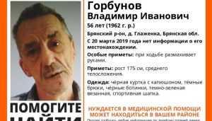 Пропавшего в Брянском районе Владимира Горбунова нашли живым