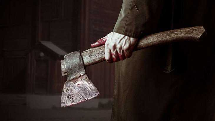 Осужден зарубивший сожительницу 140 ударами топора брянец